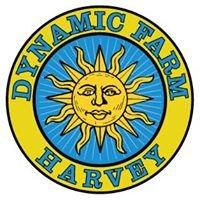Dynamic Farm Harvey