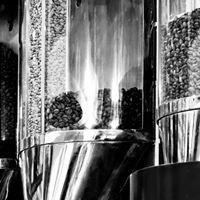 Terra Verdi - Café Orgânico