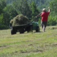 Sundhill Farm