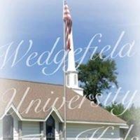 Wedgefield University for Kids