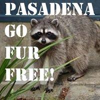 Fur Free Pasadena