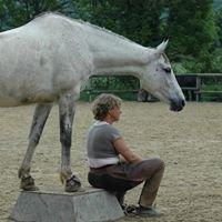 Equitation Ethologique Savoie