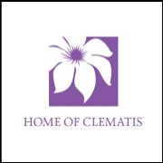 Home of Clematis