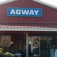 Chatham Agway