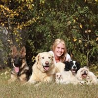 Kristmatic K9 Training and Kennels