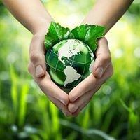 Alameda Recycling and Metals