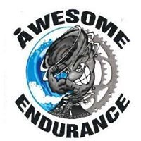 Awesome Endurance