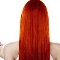 Sculptures Hair Studio
