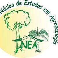 Núcleo de Estudos em Educação e Agroecologia na Amazônia - NEA