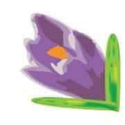 The Saffron Deli Co