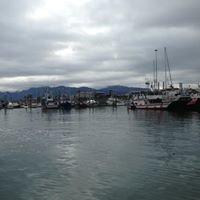 Homer Boat Harbor