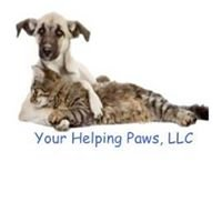 Your Helping Paws, LLC