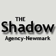 The Shadow Agency- Mystery Shopping