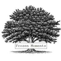 Frozen Moments Ltd