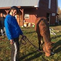 Équitation Thérapeutique Harmony