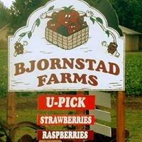 Bjornstad Farms