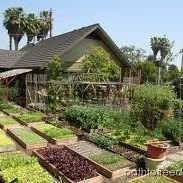 Turnkey Homesteading by Blue Planet Earthscapes