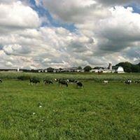 Coyne Farms Dairy