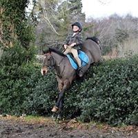 Jim Derwin Equestrian