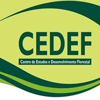Cedef - Centro de Estudos e Desenvolvimento Florestal