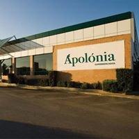 Apolónia Supermercados SA
