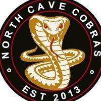 North Cave Cobras F.C.