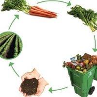 Curbside Composting Ltd