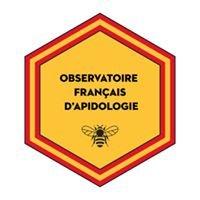 Observatoire Français d'Apidologie
