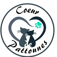 Association Coeur De Pattounes
