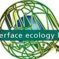 Interface Ecology Lab
