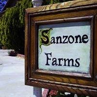 Sanzone Farms