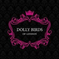 Dolly Birds