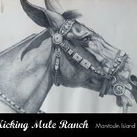 Kicking Mule Ranch