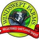 Windswept Farms