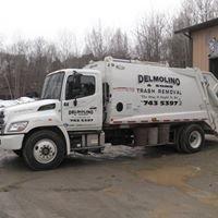 Delmolino & Sons Inc.