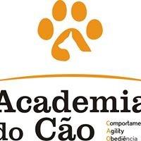 Academia do Cão - Educar o Dono, Educando o Cão