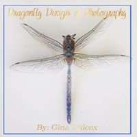 Dragonfly Design & Photography