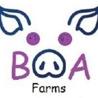 BOA Farms