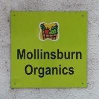 Mollinsburn Organic and Farm shop