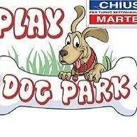 PlayDog Park