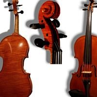 Pro Arte Stringed Instruments