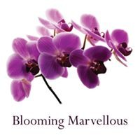Blooming Marvellous Florists