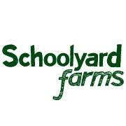 Schoolyard Farms