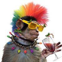 Funky Monkey Graphics