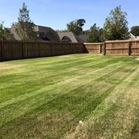 Quality Lawn Maintenance