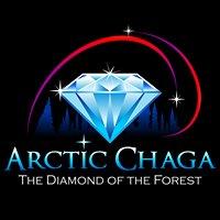 Arctic Chaga