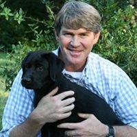 Charleston Veterinary Care