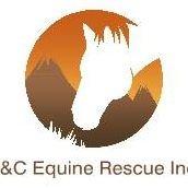 B & C Equine Rescue Inc.