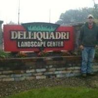 Delliquadri Lawn Maintenance & Landscaping