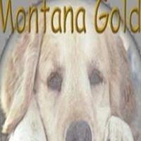 Montana Precious Gold Rescue